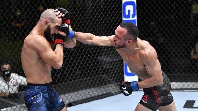 UFC Vegas 19 – výsledky