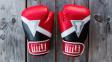 7 nezbytností pro MMA trénink v domácích podmínkách